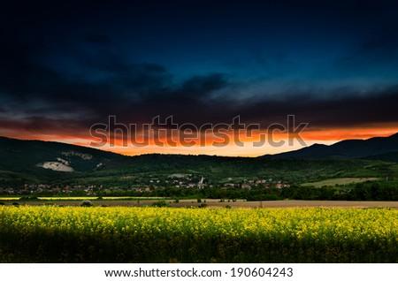 rape field in the night - stock photo