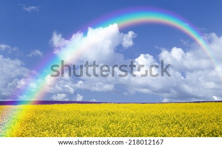 Rapeseed field and rainbow - stock photo