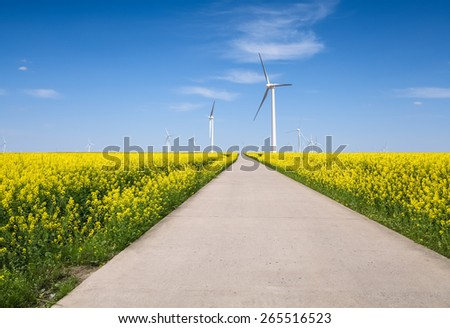 rapeseed flower landscape and wind farm for spring throughout the way - stock photo