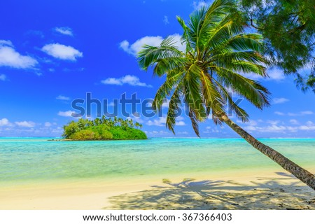 Rarotonga, Cook Islands. Motu island and palm tree, Muri Lagoon. - stock photo