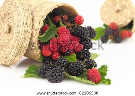Raspberries and Blackberries fall out from the basket - stock photo