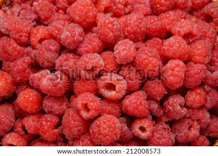 Raspberries close up. Macro photo.  - stock photo