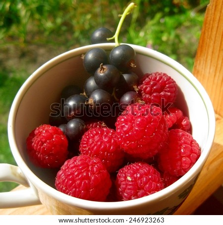 Raspberry and blackcurrant in a Cup - stock photo