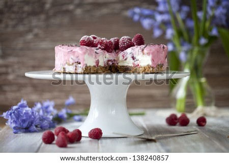 Raspberry cheesecake - stock photo