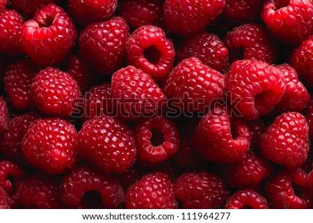 Raspberry fruit background - stock photo