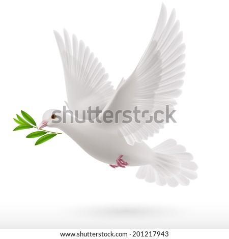 Raster version. dove flying with a green twig in its beak - stock photo