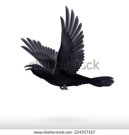 Raster version. Flying black raven isolated on white background  - stock photo