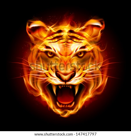 Raster version. Head of a tiger in tongues of flame. Illustration on black - stock photo