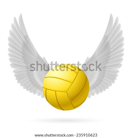 Raster version. Realistic volley ball with white wings emblem  - stock photo