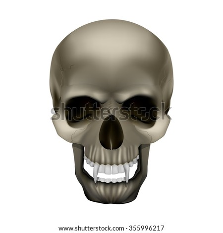 raster version skull vampire monster with fangs. Isolated object on a white background, can be used with any image. - stock photo