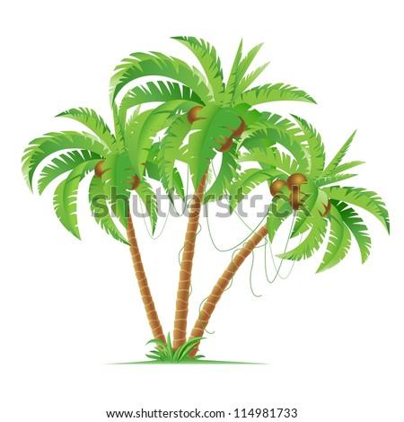 Raster version. Three cartoon coconut palms.  Illustration on white background - stock photo