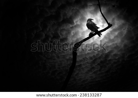 Raven on a barren branch with the Moon hidden behind clouds and providing illumination. - stock photo