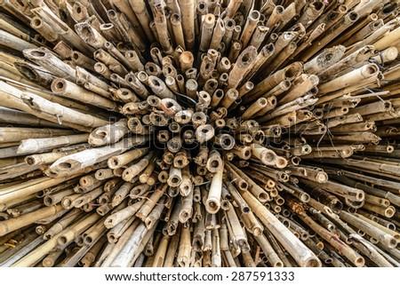 Raw bamboo background - stock photo