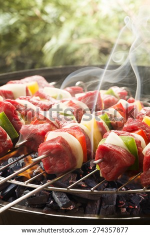 Raw beef skewers ready for grilling - stock photo