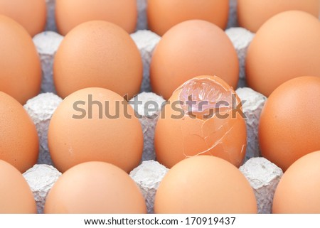 Raw break egg contained in paper tray. - stock photo