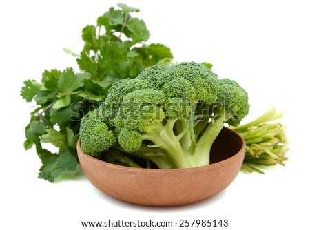 raw broccoli and cilantro in bowl  - stock photo