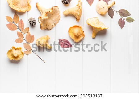 Raw chanterelles with autumn leaves on white wooden background - stock photo