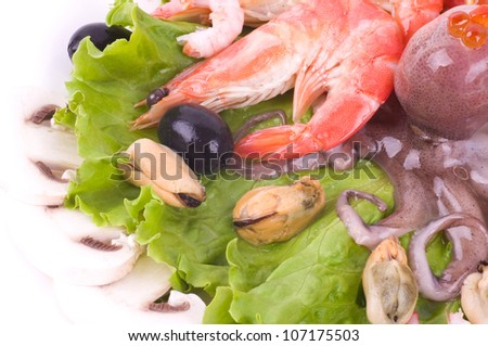 Raw cocktail of seafood on green salad with champignons - stock photo