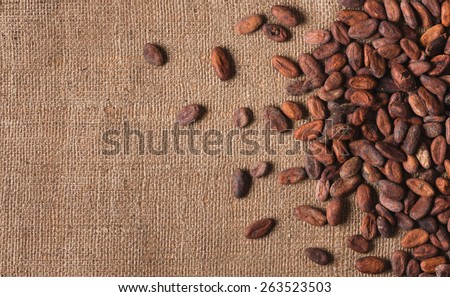 Raw cocoa beans on  sacking top view, close-up - stock photo