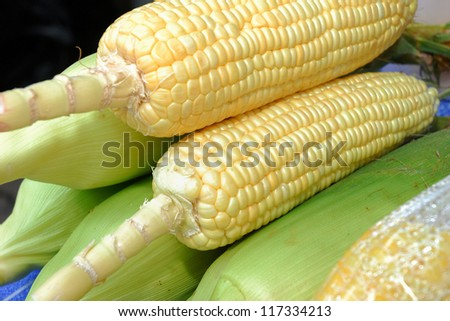 Raw corn before sent to procedure in the kitchen - stock photo