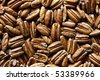 Raw, dried, and shelled pecan nuts - stock photo