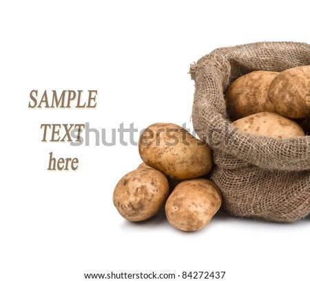 Raw dug potatoes in burlap bag with sample text - stock photo
