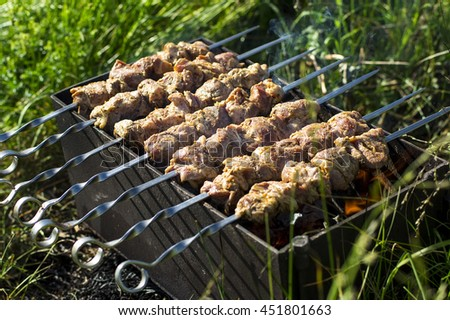 raw marinated meat on metal kebab skewers in brazier, in a green nature background - stock photo