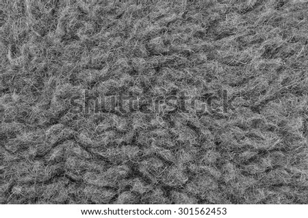 Raw Merino Sheep Wool Macro Closeup, Large Detailed Grey Textured Pattern Copy Space Background, Horizontal Gray Texture Studio Shot - stock photo