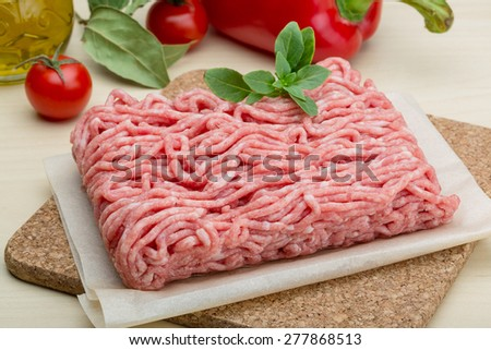Raw Minced meat with herbs and spices - stock photo
