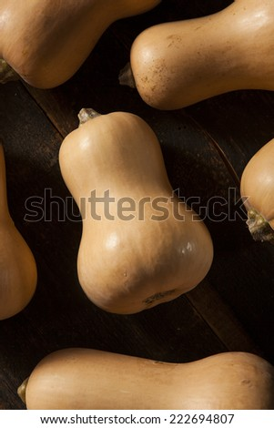 Raw Organic Butternut Squash on a Background - stock photo