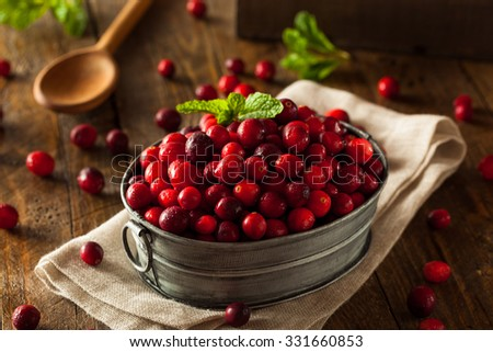 Raw Organic Red Cranberries in a Bowl - stock photo