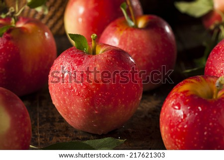 Raw Organic Red Gala Apples Ready to Eat - stock photo