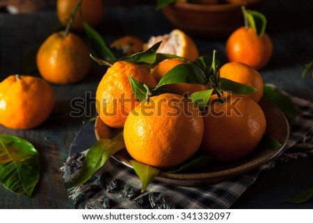 Raw Organic Satsuma Oranges with Green Leaves - stock photo