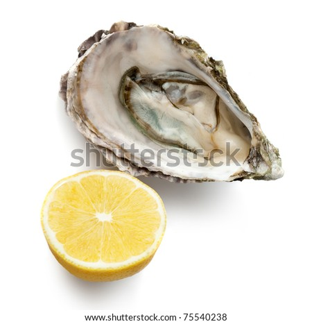 Raw oyster and half of lemon - stock photo