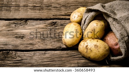 Raw potato food . Fresh potatoes in an old sack on wooden background. Free place for text. - stock photo