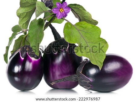 Raw purple aubergines with leaves and bloom over white background - stock photo