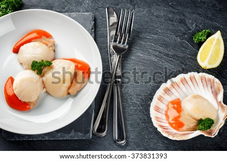 Raw queen scallops in sea food dinner concept. Food background with copy space  - stock photo