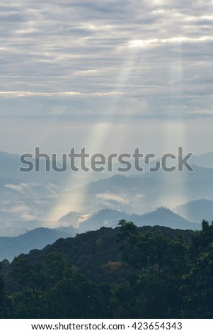 Rays of light shining down // Vertical - stock photo