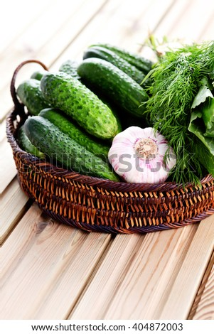 ready for homemade pickles with garlic dill and horseradish - food and drink - stock photo