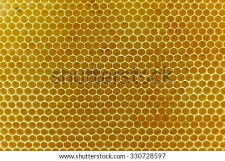 Real golden beewax honeycombs nature abstract pattern texture background - stock photo