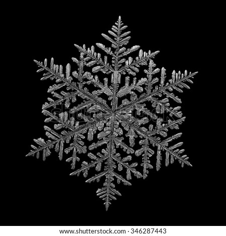 Real snowflake macro photo: very large fernlike dendrite crystal, around 8 millimeters from tip to tip. Monochrome version, isolated on black background for design - stock photo