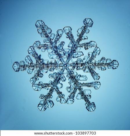 Real snowflakes water crystals - stock photo
