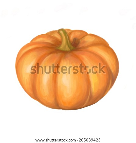 Realistic paint isolated pumpkin on white background. Hand draw raster illustration - stock photo