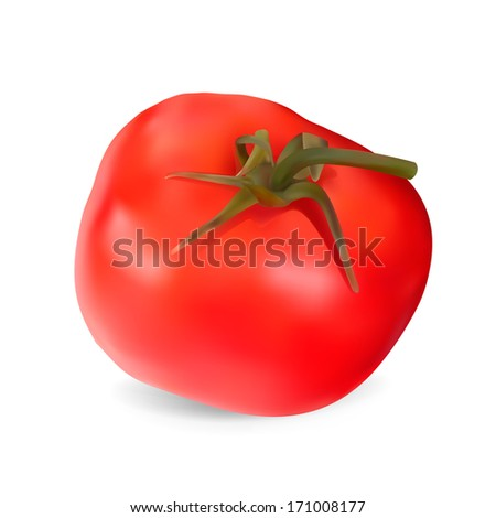 Realistic red Tomato. Illustration. Isolated on white background - stock photo