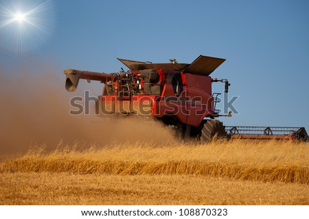 Reaping machine or harvester combine on a wheat field with blue sky and sun behind it - stock photo