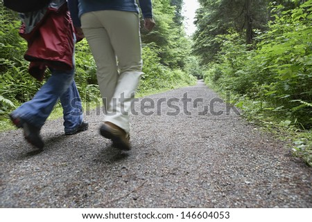 Rear view lowsection of two people walking on forest road amid lush trees - stock photo