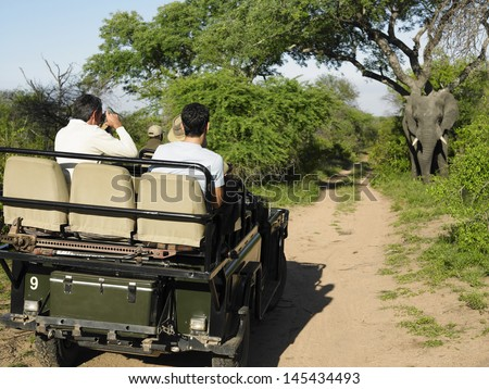Rear view of a group of tourists in jeep looking at elephant - stock photo