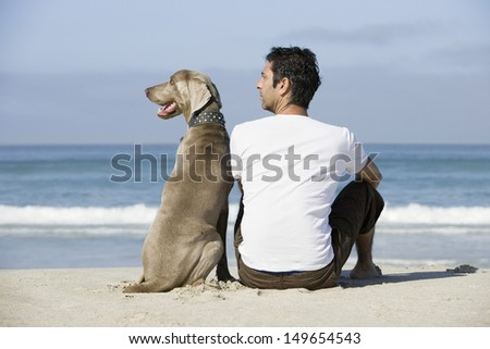 Rear view of a man and dog sitting on beach - stock photo