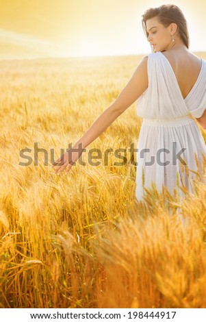 Rear view of beautiful, young woman standing in the wheat field, touching a wheat..copy space, flare light, sunset, summer season - stock photo