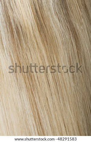 Rear view of blonde hair - stock photo